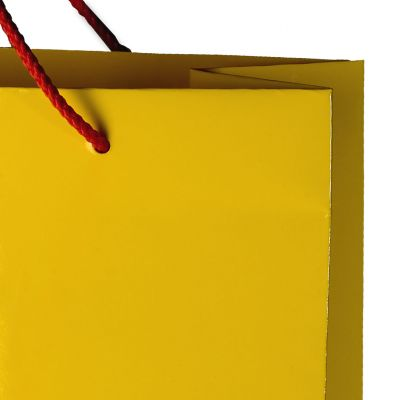 Carrier paper bag with glossy lamination, rope handles and knots